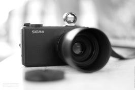 Sigma DP3 Merrill